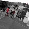 Visitors @ Mount Victoria Lookout - Wellington NZ