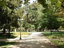 Vista Parque Forestal