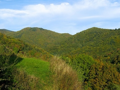 Vosges - Thann - Alsace