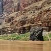 Vulcans Throne Route - Grand Canyon - Arizona - USA