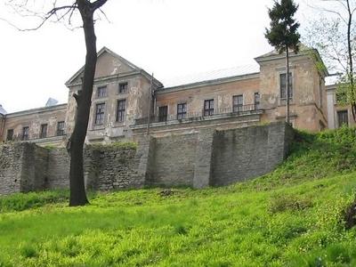 Castle In Vyshnivets