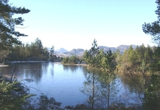 View From Gwydir Forest