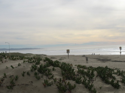 View Of The  Guadalupe   Nipomo  Dunes From  Oceano