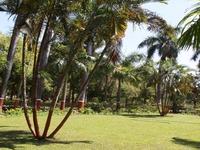 Waghai Botanical Gardens