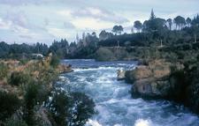 Waikato River Walking Track - Tongariro National Park - New Zealand