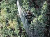 Waiohine Gorge