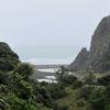 Waitakere Ranges Regional Park - North Island NZ