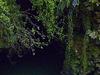 Waitomo Caves Entrance
