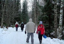 Walking In Snowy Forest - Vaasa Finland