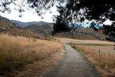 Walk Up Castle Hill - Arthurs Pass - South Island NZ