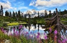 WA Mt. Shuksan With Highwood Lake