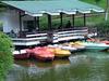 Ward's Lake Shillong