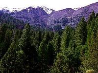 Warner Montañas