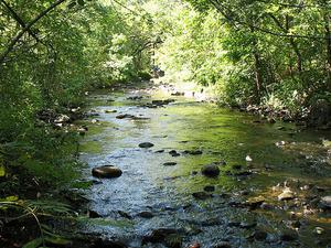 Watab Río