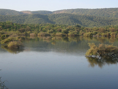 Water Body Within The Sariska Reserve