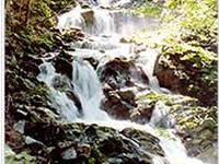 Fraitgraben Gorge Waterfall