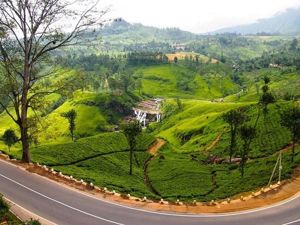 Srilanka - Misty Hills 10 Days 09 Nights Photos