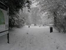 View Of Waterlow Park