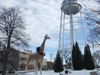 Watertower And Giraffe Statue