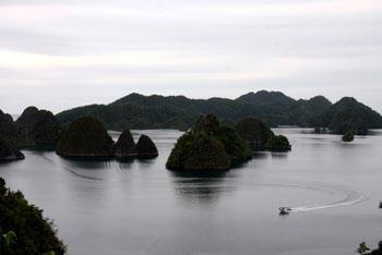 Wayag Island - View