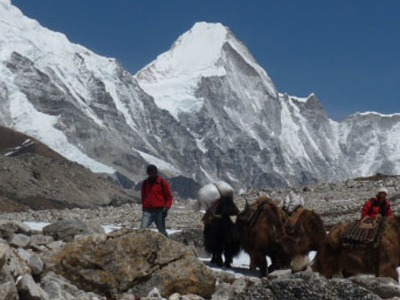On The Way To Everest Base Camp Trekking                                                                          King