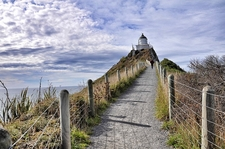 Way To Nugget Point Lighthouse NZ South Island