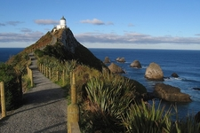 Way To Nugget Point Lighthouse - Otago NZ