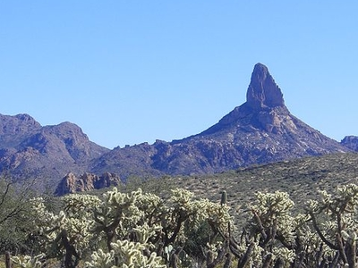 Weaver's Needle - Arizona