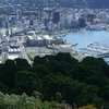 Wellington From Top Of Mount Victoria