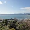 Wellington Harbour From Wadestown NZ