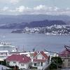 Wellington Harbour Overview - New Zealand