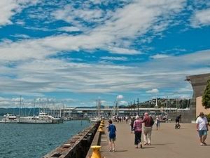 Wellington Porto