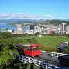 Wellington Overview - Northland