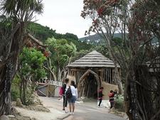 @ Wellington Zoo NZ