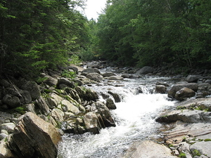 West Branch Peabody Río