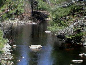 Little River Occidental