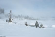 West Thumb Trail - Yellowstone - Wyoming - USA