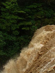 Whakapapanui Stream - Falls 'n' Flood