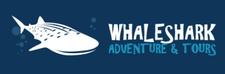 Whaleshark Adventure