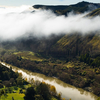 Whanganui Forests Hunting Area - Whanganui National Park - New Zealand