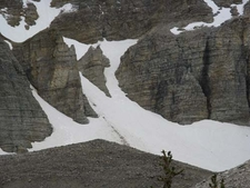 Wheeler Peak Snow Field
