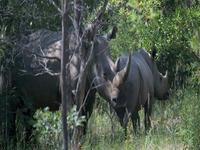 Matobo Parque Nacional