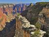 Widforss Trail - Grand Canyon - Arizona - USA