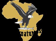 Wild Signature Safaris
