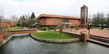 Willamette University Stream