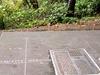 Willamette Stone State Heritage Site