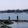 Wills Gut Bailey Island