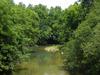 Wilsons Creek Missouri