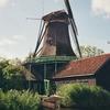 Windmill Het Pink