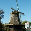 Windmill In Weesp